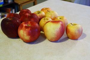 Apple Crisp 1