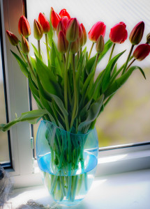 Only Aliens Send Flowers